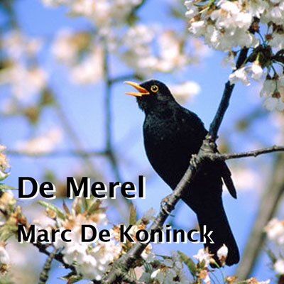 Artwork De Merel (in de boom in de Marikenstraat)