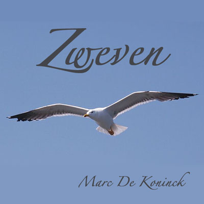 Artwork Zweven