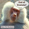 Platenhoes God of Evolutie?